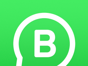 Download WhatsApp Business APK Version